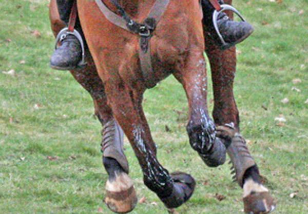 eventing-gallop-stock-al-crook-600x417