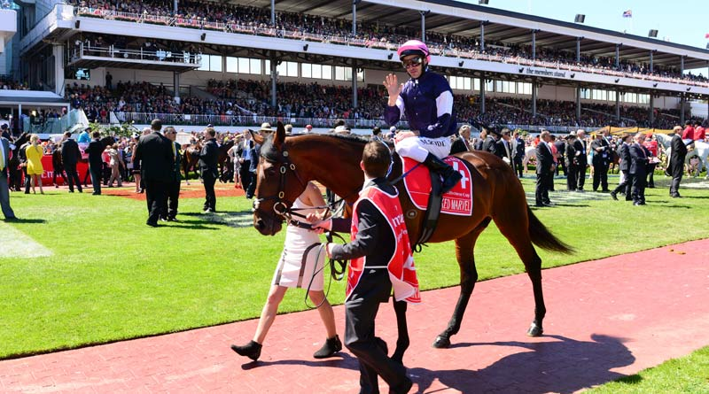 Why the Melbourne Cup is one of racing's most coveted prizes