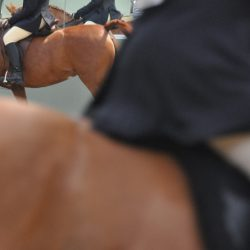 Better support for female horse riders on the way: Here's how you can help