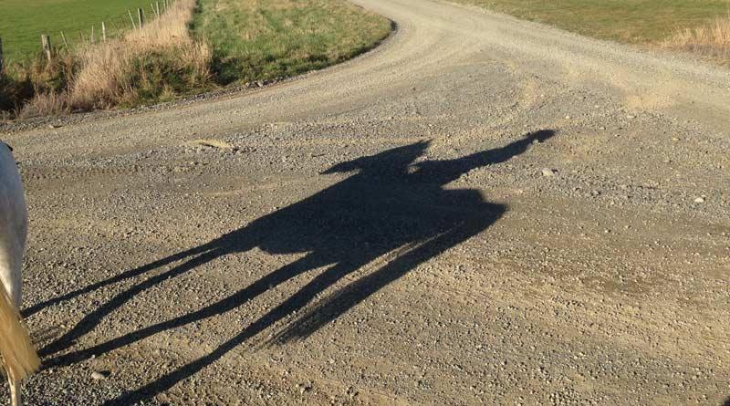 shadow-800-445