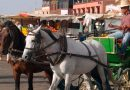 "Help for those doing the ""donkey work"" in the tourism industry"