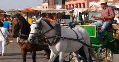 spana-carriage