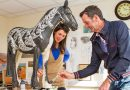 """Invisible"" equine artwork headed for auction in London"
