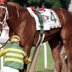RIP Charismatic: Sudden death of one of racing's most famous battlers
