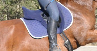 Is it wrong to jump your horse in a dressage saddle?