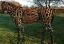 Rescued horses will be coming up roses at Chelsea Flower Show