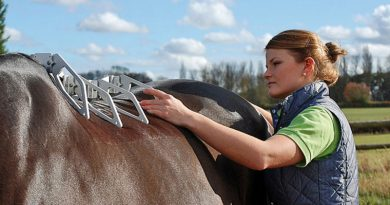 Measuring the 3-dimensional shape of the horse's back with the Arc Device™