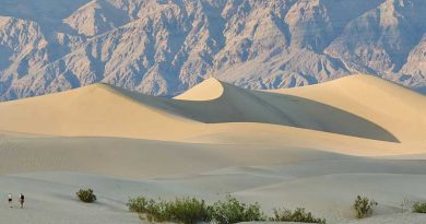Sand dunes in Death Valley. The location of the canyon known informally as The Barnyard, which is dotted with the preserved footprints of ancient mammals and birds, remains a secret. Photo: Tuxyso/Wikimedia Commons via Wikimedia Commons