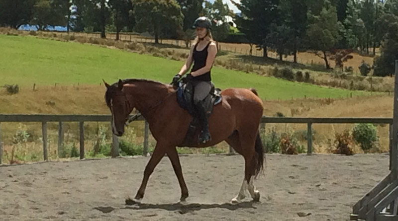 Yes! You too can learn to ride with soft hands – here's how