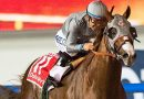 California Chrome's dad Lucky Pulpit dies at 16