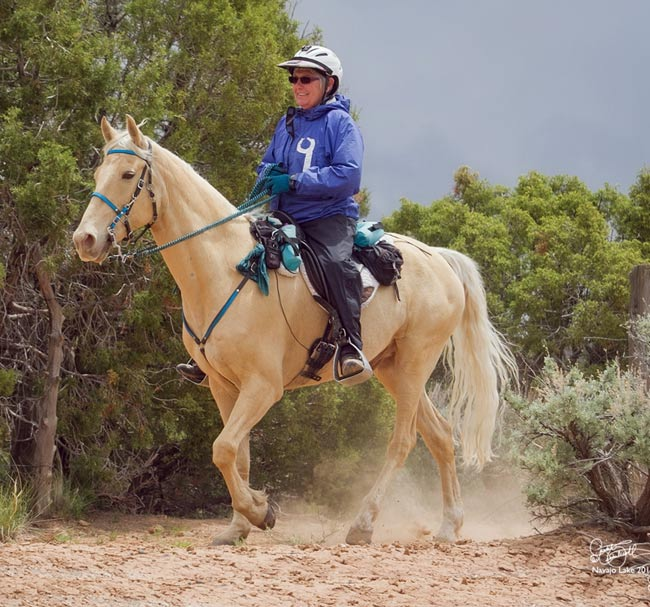 Lin and Hooch gaiting among the junipers and sage at the 2016 Navajo Lake ride in New Mexico.