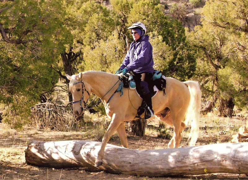 Lin and Hooch handling a typical trail obstacle. In NATRC, the trail obstacles encountered are natural and representative of the local terrain.