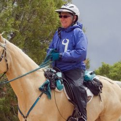 "Gaited horse Hooch is US trail riding's new ""golden boy"""