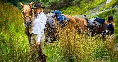 Hampton & Harlow Equestrian founder Karen Bazzan.