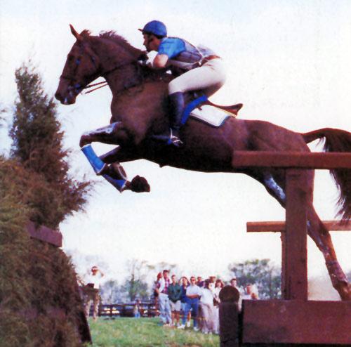 David O'Connor and Wilton Fair.