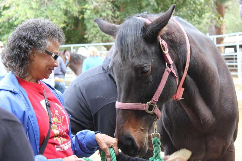 """Charlotte Driver said the horse programe provided a sense of accomplishment and hope. """"We have hope no matter what happens — we'll never give up."""" Photo: Elaine Chan"""