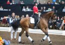 Carl conquers California: Dressage guru tells it like it is
