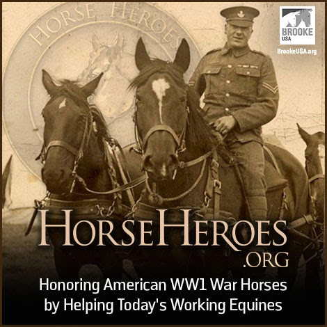 Brooke USA's Horse Heroes program aims to raise a million dollars this year to commemorate the million American equines who served in World War One.