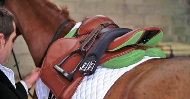 Irish saddle maker breaks with equestrian tradition