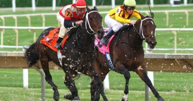 Fatality rates in American horse racing continue to decline. Photo: Slooby, Chicago, CC BY 2.0 via Wikimedia Commons