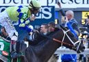 """Racehorse fractures: Surgeon says """"RSI"""" the biggest risk factor"""