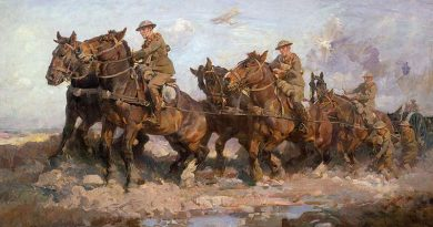 Picturing horses in the Great War