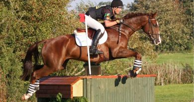 William Fox-Pitt picks up ride on Kiwi-bred horse