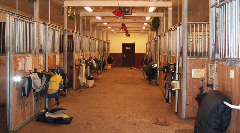 Scientific literature on air quality in stables and indoor arenas were reviewed by German Researchers. Photo: Lidingo CC BY-SA 3.0 via Wikimedia Commons