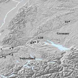 Ancient DNA paints a picture of horse occupation in what is now Switzerland