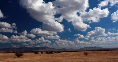 Rangelands in Arizona.