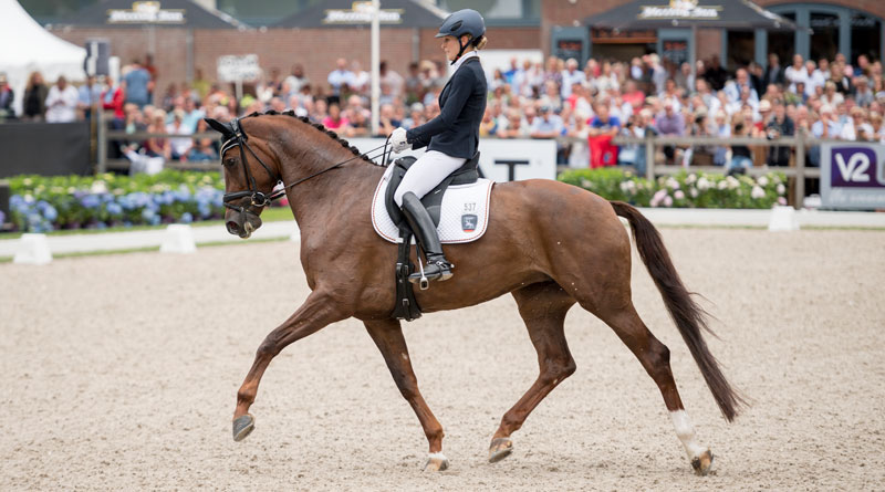 German rider Beatrice Buchwald and Victoria's Secret, winners of the Five-year-old Finals at the FEI 2016 World Young Horse Championships.