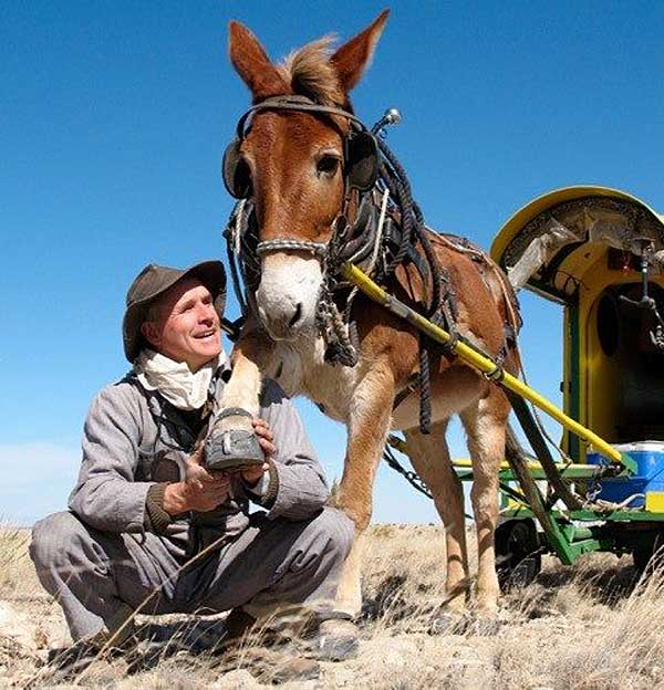 Bernie Harberts and his mule Polly journeyed through the US interior.