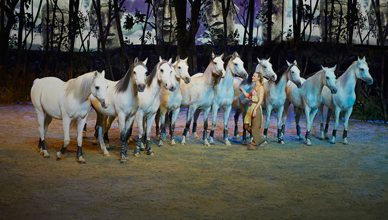 Cavalia's new show Odysseo, is being performed in Ontario, Canada, until July 16.