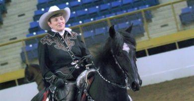 """My horse saved my life"": Peruvian Paso steps up in stallion attack"