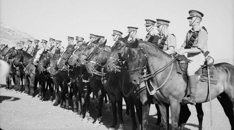 WWI horses in Palestine.