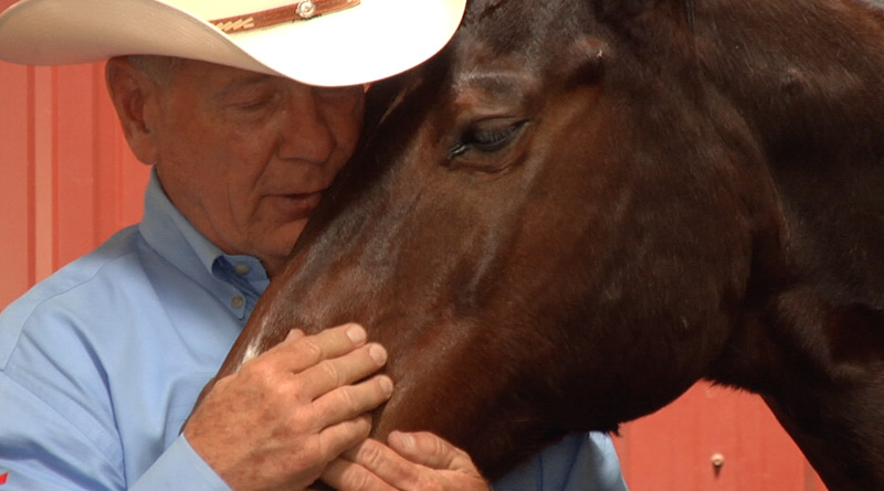 "Horse trainer John Lyons features on the Equitopia Center's new ""Training without Fear"" video."