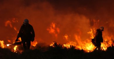 Megafires and terrorism: Are horses the answer to an overlooked threat?