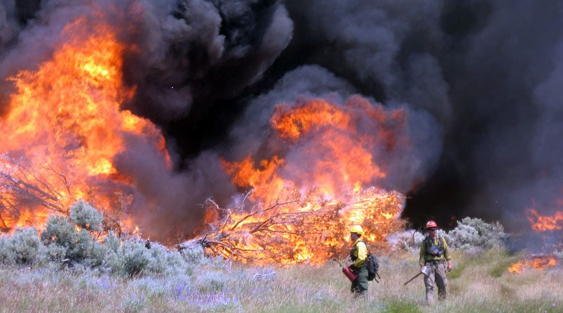 BLM Firefighters at work in, Moonhill RX, Burns, Oregon.