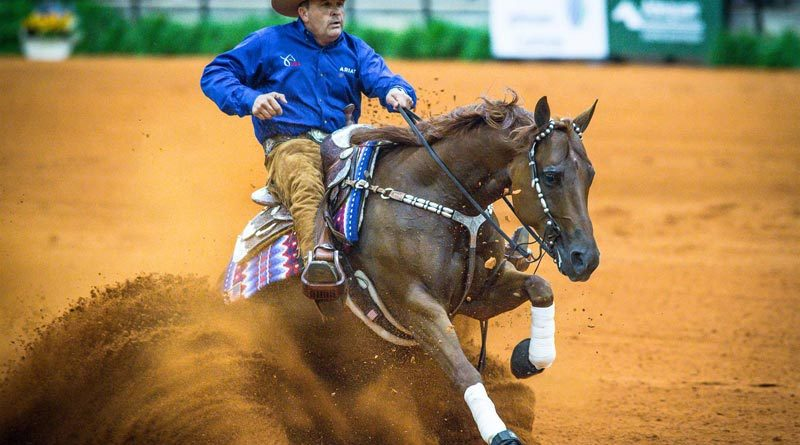 Individual reining silver medalists Dan Huss and Ms Dreamy.