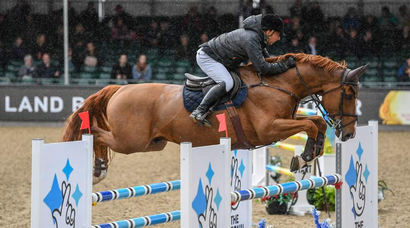 Robert Whitaker and Major Delacour won the Land Rover National 1.40m Open Jumping Competition on the opening day of Windsor.